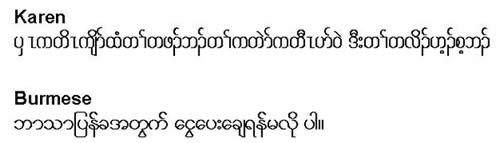 Karen and Burmese Interpretation Services Statements